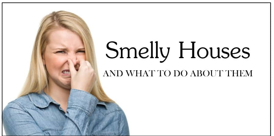 Get Food Smell Out Of House In Small Apartments